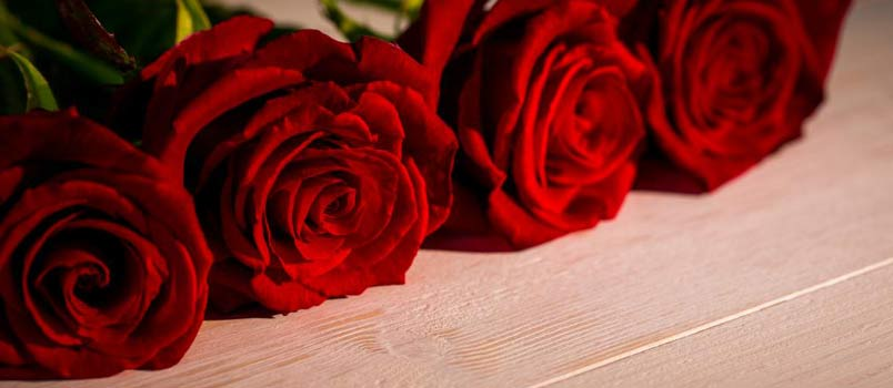 Red roses day